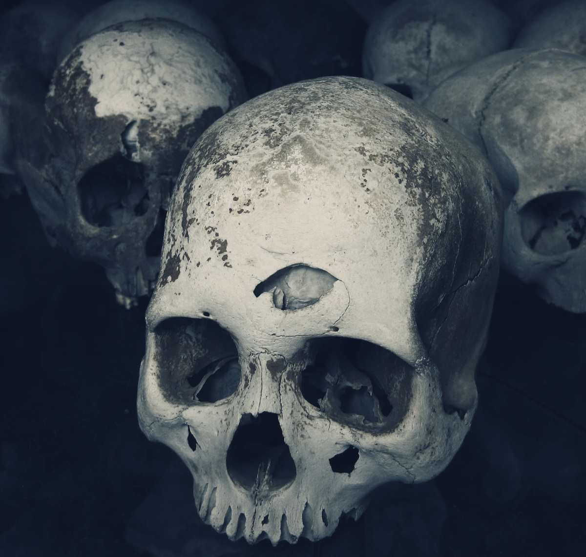 Photo of several real human skulls in Killing Fields of Cambodia