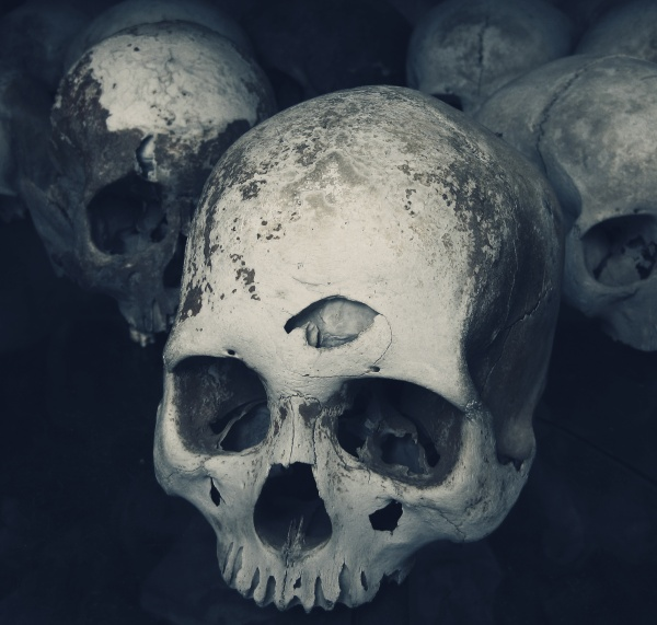 Skulls in Phnom Penh, Cambodia