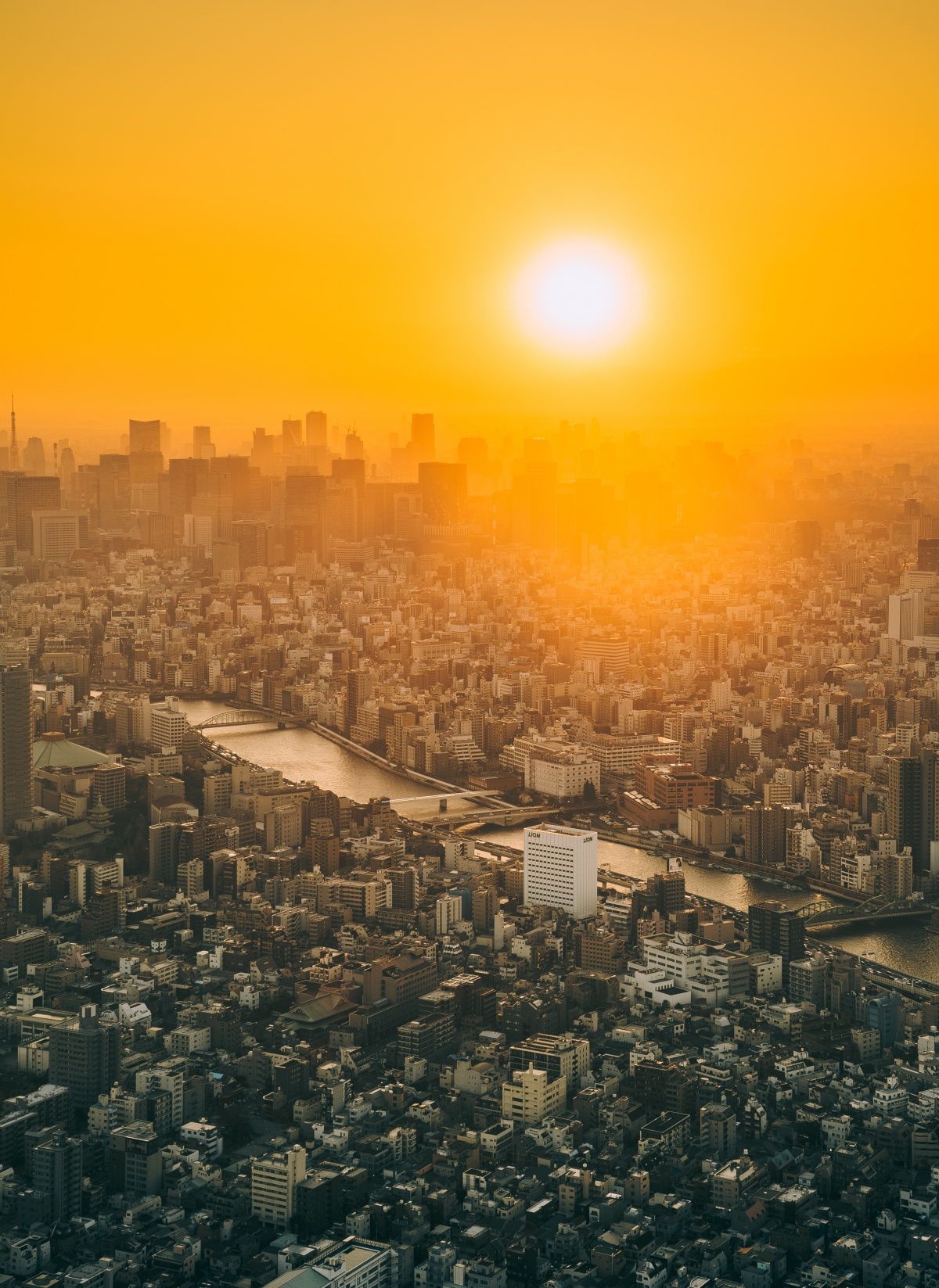 Picture of a beautiful sunset over Tokyo skyline from Tokyo Skytree