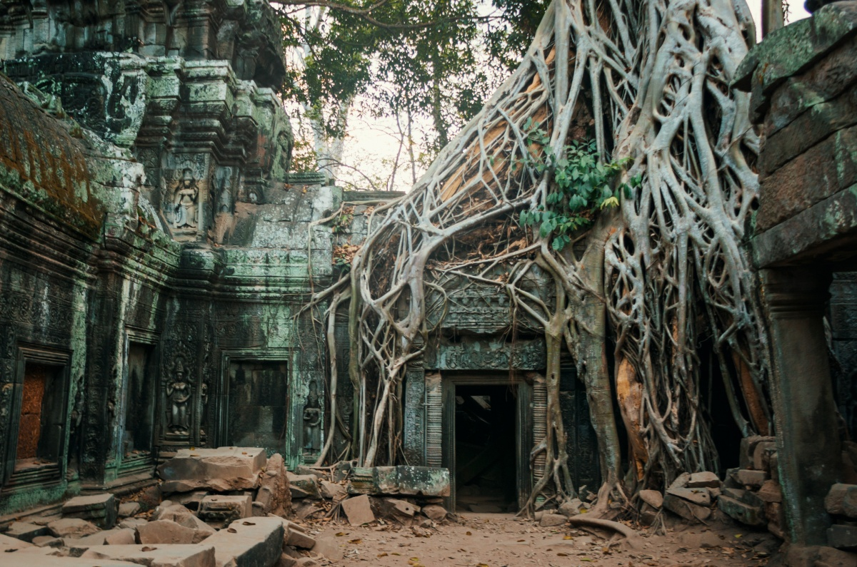 Photo of Ta Prohm temple ruins